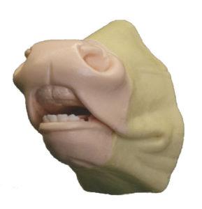 flehmen nose with muzzle