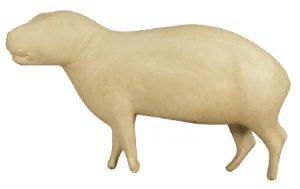 Capybara, Lifesize