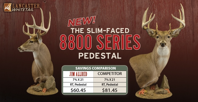 Whitetail Pedestal, Taxidermy supply, Taxidermy supplies, Whitetail forms, Whitetail pedestal forms