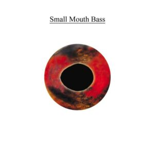SMALLMOUTH BASS EYE