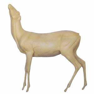 LIFESIZE WT DEER