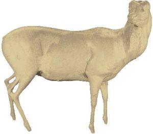 lifesize axis deer